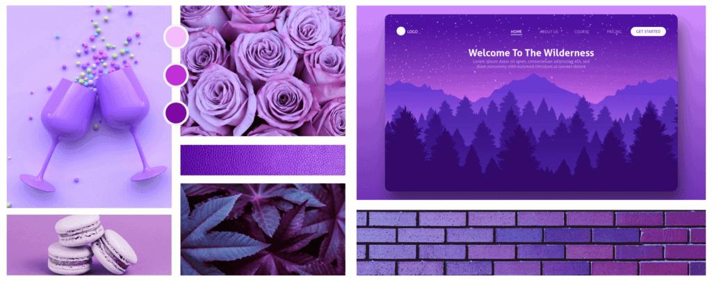 Farbpsychologie im Webdesign Farbe Lila